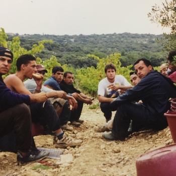 VENDANGES 2002