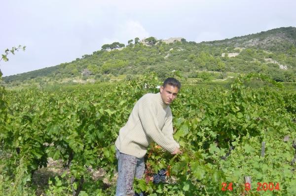 Paco-et-le-Castellas