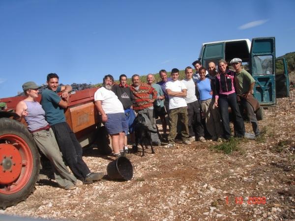 Vendanges-2008-342